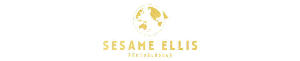 sesame ellis . daily life photo blogging by rachel devine logo